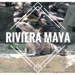 Que faire à la Riviera Maya ?