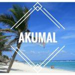 Akumal : nado con tortugas en el Caribe Mexicano