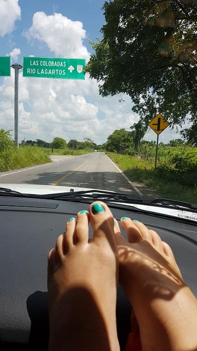 yucatan viaje mexico road trip