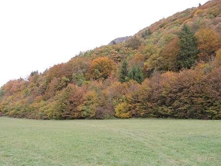 lac d'annecy automne